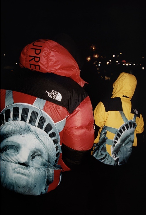 【Supreme】19FW week10 Supreme×THE NORTH FACE